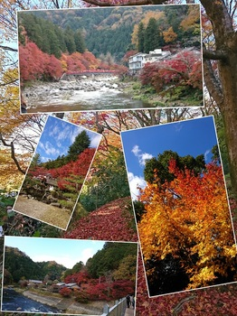 collage-1511757094953.jpg