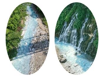 collage-1502155206898.jpg